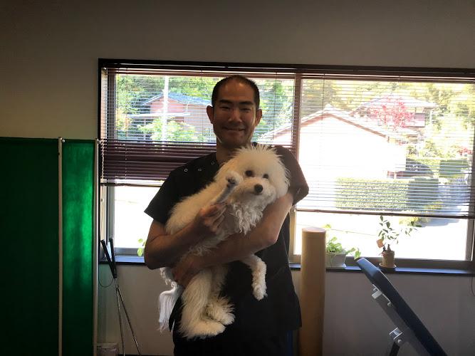 唐津市在住、柔道整復師(整体師)の腰痛を施術しました。